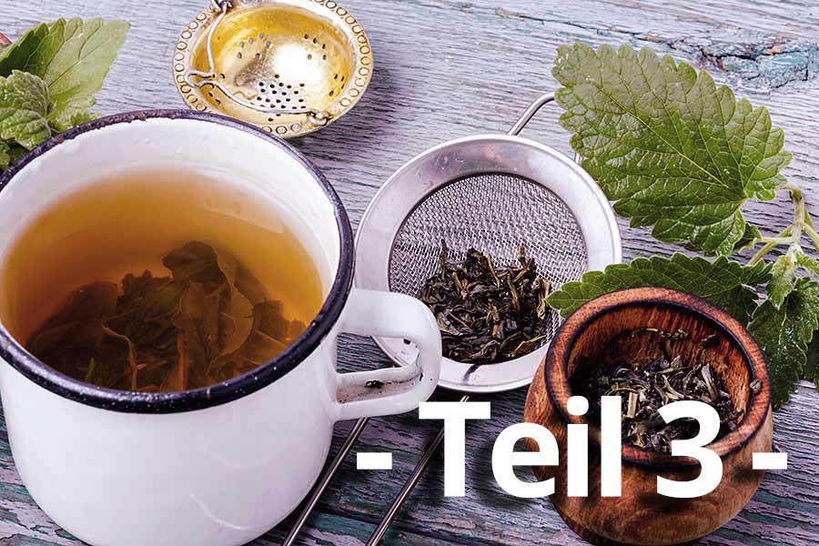 Weiße Teetasse mit Kräutern und einem Kräutersieb auf einem Holztisch
